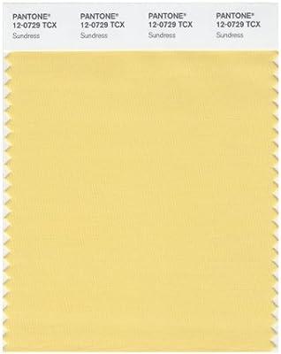Amazon.com: Pantone Smart color Swatch tarjeta, 12-0729 TCX ...