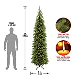 National Tree 9 Foot Kingswood Fir Pencil Tree