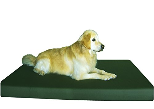 - Dogbed4less Orthopedic Memory Foam Dog Bed for Large Pet with Durable Canvas Cover, Waterproof Liner and Extra Case, Gel Cooling XXL 55X37X4 Pad