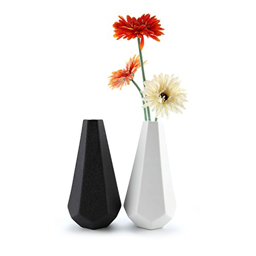 T4U Matte Ribbed Hexegan Ceramic Home Decor Flower Vase Set of 2