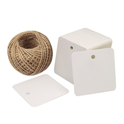 Valentine Tags,100PCS Square Hang Tags with String Kraft Paper Blank Gift Tags with 100 Feet Natural Jute Twine for Arts and Crafts, Wedding Christmas Day ()