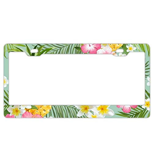 YEX Abstract Tropical Pineapples Flowers License Plate Frame Car Tag Frame Auto License Plate Holder 12
