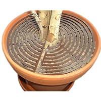 Protection pour plante en pot A-Safety ronde Mini