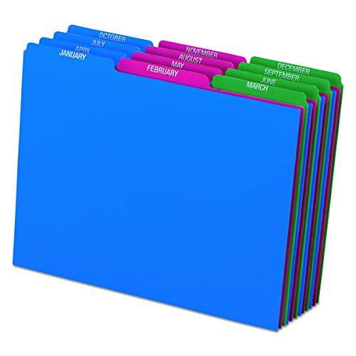 Pendaflex 40144 Top Tab File Guides, Monthly/Jan-Dec, 1/3 Tab, Polypropylene, Letter (Set of 12) ()