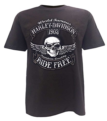 s Bad Manners Winged Skull Short Sleeve T-Shirt, Brown (2XL) ()