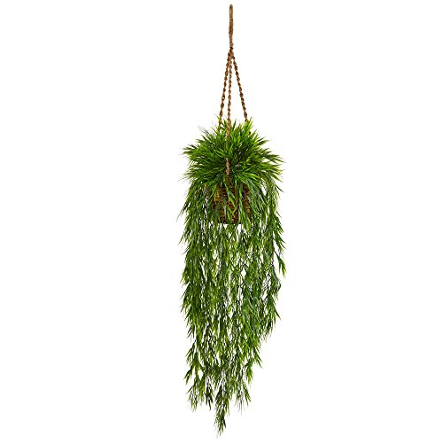 Asian Bamboo Plant (Nearly Natural Mini Bamboo Artificial Plant Hanging Basket, Green)