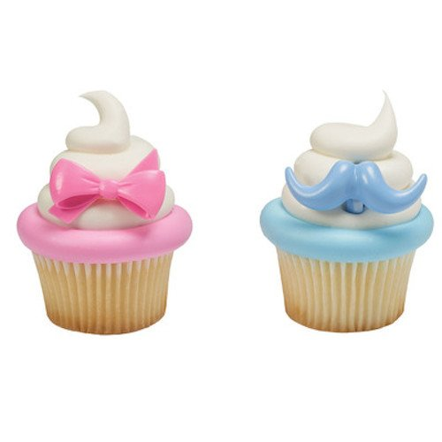 Baby Gender Reveal Pink Bow & Blue Mustache