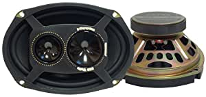 Pyramid 693SX 6-Inch x 9-Inch 300 Watts ThreeWay Speakers