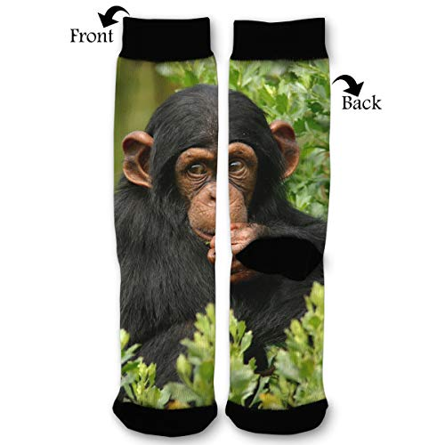 EKUIOP Socks Cute Monkey Chimpanzee Funny Fashion Novelty Advanced Moisture Wicking Sock for Man Women
