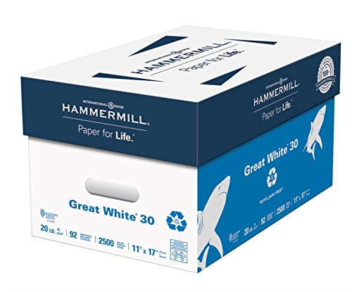Hammermill Great White Copy Paper, Ledger Paper, 20 Lb, 30% Recycled, 500 Sheets Per Ream, Case of 5 Reams