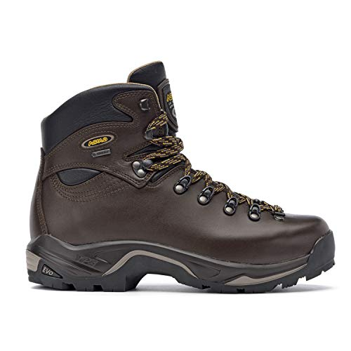 Asolo Men's TPS 520 GV Evo Boot in Chestnut for Backpacking, Hiking, Trekking