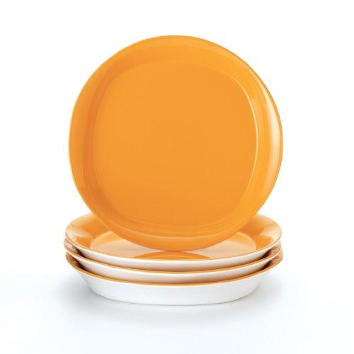 Rachael Ray Dinnerware Round Square 4 Piece Salad Plate