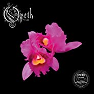 Orchid [2 LP] [Pink w/ White & Red Marble S