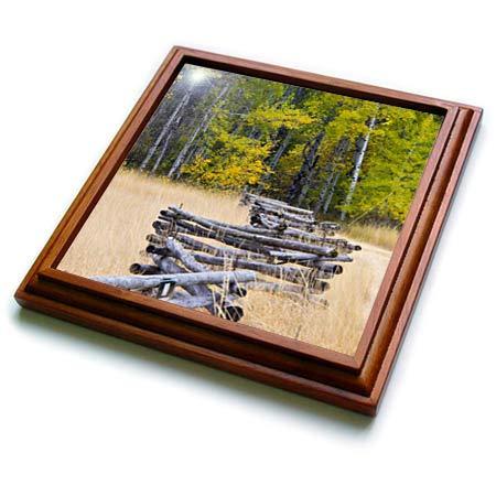 3dRose Danita Delimont - Scenics - USA, Washington State, North Cascades, Zig Zag Fence in Autumn field - 8x8 Trivet with 6x6 ceramic tile (trv_315201_1)
