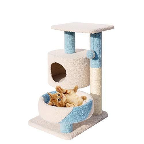 bluee Ldlms Pet supplies Small cat climbing frame cat furniture solid wood cat litter cat jumping cat tree bold sisal pillar cat climbing cat supplies (color   bluee)
