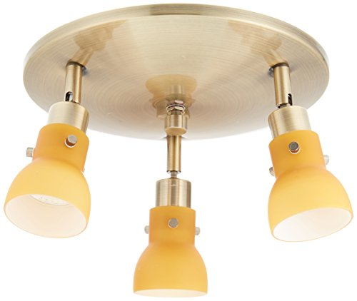 (Lite Source LS-17093AB/AMB Director II 3-Head Wall/Flush Mount Spot Light, Antique Brass with Amber)