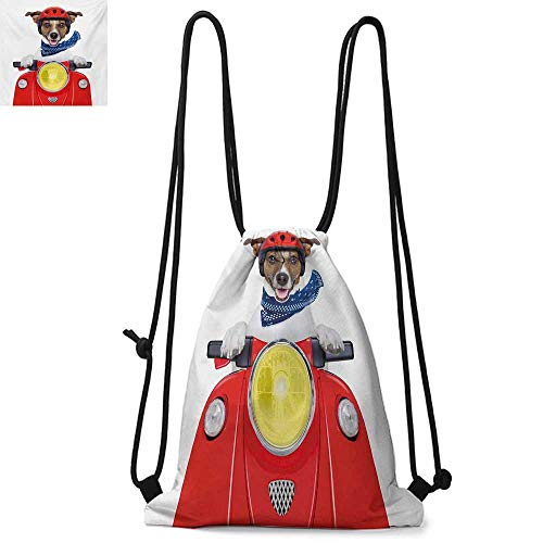 - Dog DriverPuppy with Helmet Riding Motorbike Humor Jack Russell Courier Italy Pet GraphicSuitable for school or travel W13.8 x L17.7 Inch Multicolor