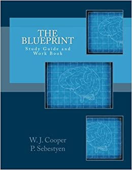 The blueprint study guide and workbook how changing your the blueprint study guide and workbook how changing your perception changes your life w j cooper jr patty sebestyen 9781542601139 amazon books malvernweather Gallery