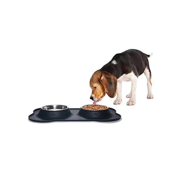 KEKS Small Dog Bowls Set of 2 Stainless Steel Bowls with Non-Skid & No Spill Silicone Stand for Small Dogs Cats Puppy & Collapsible Travel Pet Bowl 7