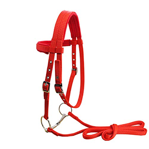 Highest Rated Horse Horse Driving Equipment
