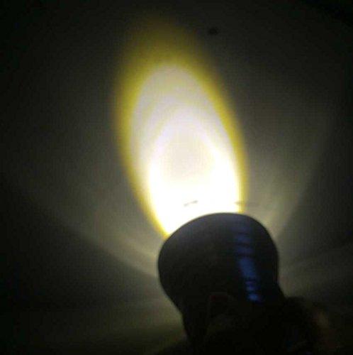 Review LemonBest 10w Warm White