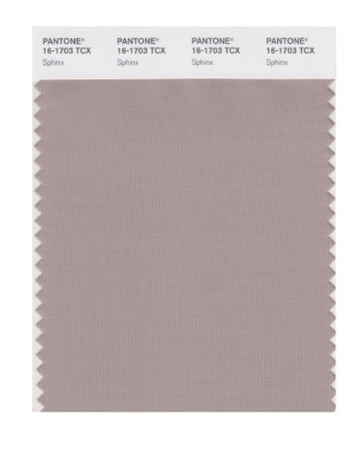 PANTONE SMART 16-1703X Color Swatch Card, Sphinx (Card Sphinx)