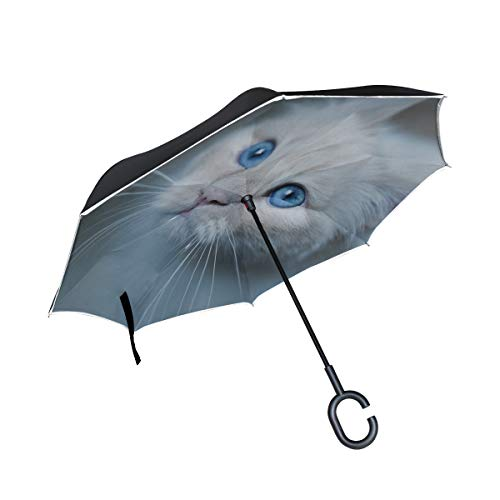 RH Studio Inverted Umbrella Burmese Cat Muzzle Blue Large Double Layer Outdoor Rain Sun Car Reversible Umbrella