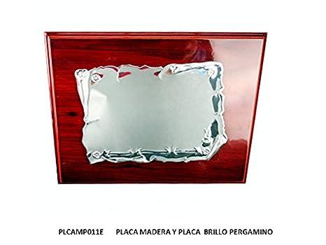 CRISTALERIA BOHEMIA Placa Homenaje EN ALUMNIO Y Madera P091 ...