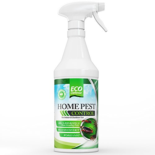 Ant Roach Spray (Eco Defense Organic Home Pest Control Spray - Kills & Repels, Ants, Roaches, Spiders, and Other Pests Guaranteed - Natural Insect Killer - Child & Pet Safe - Indoor/Outdoor Spray)