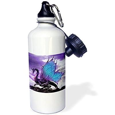 Conte de fées Dragon Sports Bouteille d'eau en acier inoxydable Bouteille d'eau pour femme homme enfants 400ml