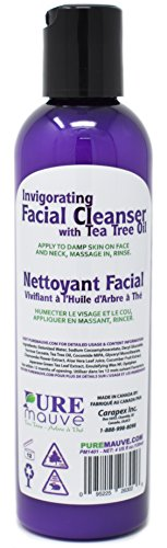 Buy facial cleanser for african american oily skin