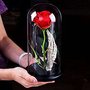 Norbi Beauty and The Beast Rose Led Light with Red Rose in Glass Dome on Wooden Base Gift for Valentine's Day Christmas Wedding Anniversary Birthday 114