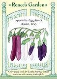 Eggplant - Asian Trio Seeds