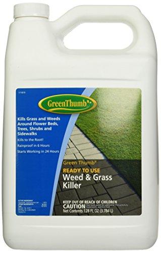 Bonide Product 70308 Thumb Gallon Weed/Grass Killer, Green