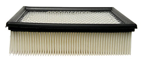(ACDelco A1604C Professional Air Filter)