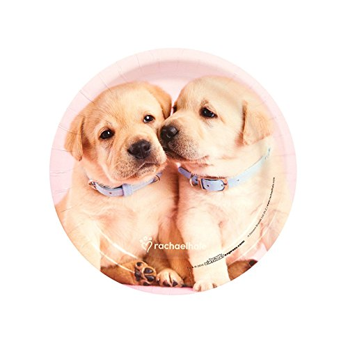 - BirthdayExpress Glamour Dogs Party Supplies 24 Pack Dessert Plates