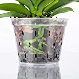 DAN Market 5.5 inch Orchid Breathable Slotted Clear