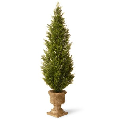 National Tree 60 Inch Arborvitae Plant in Decorative Urn (LMC4-701-60)