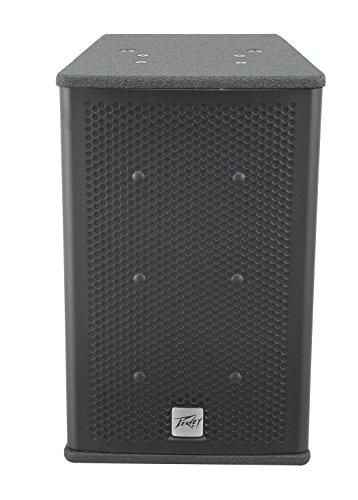 Speaker Black Widow (Peavey Elements 108C 8 in. Passive Weatherproof Loudspeaker)