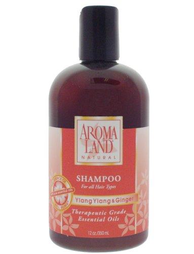 Aromaland Natural Shampoo (Aromaland Ylang Ylang and Ginger Shampoo 12 oz)