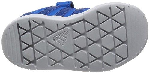 adidas Unisex Baby LK Trainer 7 Lauflernschuhe, Rosa Blau (Shock Blue S16/Eqt Blue S16/Orange)