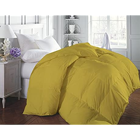 1200 Thread Count Luxurious And Hypoallergenic 100 Egyptian Cotton Duvet Yellow California King By Kotton Culture Solid Warm 600 GSM Down Comforter Duvet With Microfibre Filling