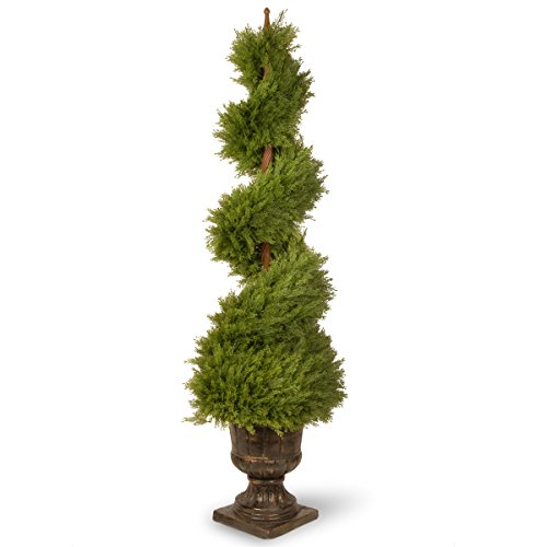 National Tree 60 Inch Juniper Spiral Tree in Decorative Urn (LCYSP4-707-60) (Spiral Juniper)