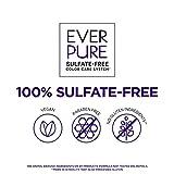 L'Oreal Paris EverPure Sulfate Free Brass Toning