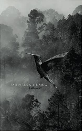 Sad birds still sing faraway 9781548966683 amazon books altavistaventures Images
