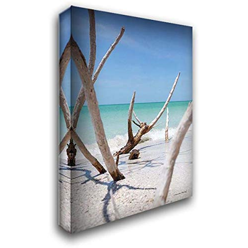 Beachwood IV 28x40 Gallery Wrapped Stretched Canvas Art by Hanley, Melissa