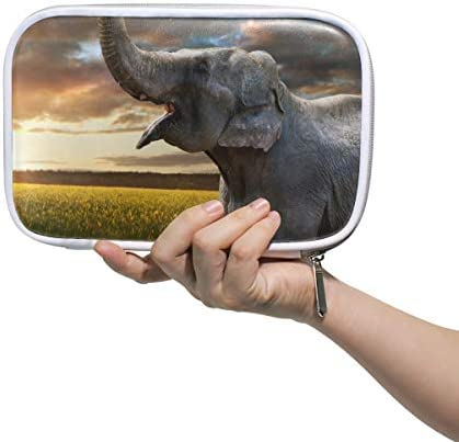 Linomo Multifunktional Federmäppchen Tier Elefant Reißverschluss Leder Passhülle Bleistift Beutel Klein Kosmetiktasche Makeup Tasche für Mädchen Teenager Junge Kinder