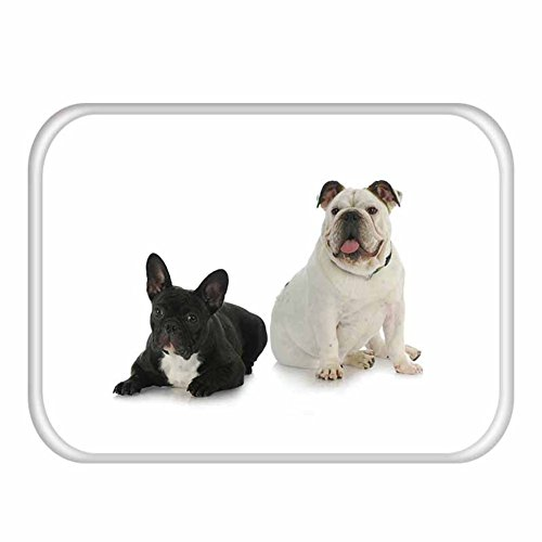 Doormats rug floor door ground mat anti-slip non slip pad with cartoon dog for outdoor or indoor-N (716 Entrance)