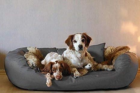 tierlando® A3 - 02 Ares extra resistente Perros sofá cama para perros, talla XXXL 170 cm grafito: Amazon.es: Productos para mascotas