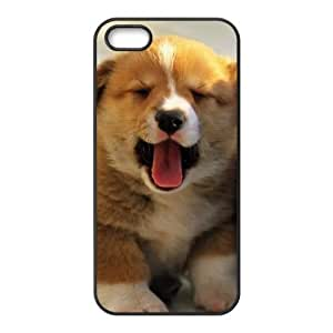 Fashion dog Personalized iPhone 5 5S PC Silicone Case Cover